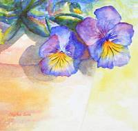 Two Shadows of Pansies watercolor