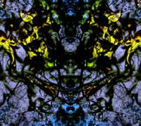 ABSTRACT 1, EDIT D, ON 30 JUNE 2015