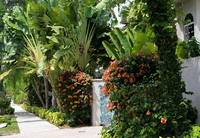 Tropical Pathway