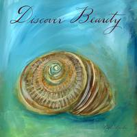 Dreamy Shells: Nautilus Discover Beauty