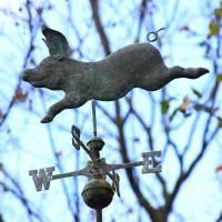 Flying Piggy by Karen Adams