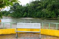 Park Bench Next to the Napo River
