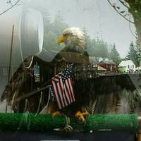 American Bald Eagle Flag Patriotic Overlay
