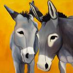 Long ears and Donkeys gallery