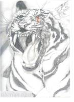 Siberian Tiger(a cry for help)