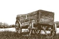 Stamped Abandoned Wooden Wagon in a fie