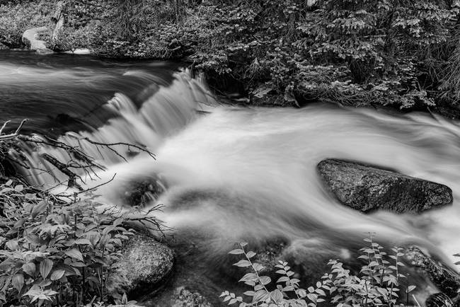 Mountain Stream Waterfall in Black and White