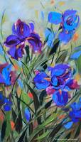 Wild Wind Purple Iris print