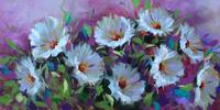 Purple Panoply Daisies