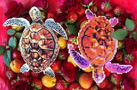Turtles in a fruit salad