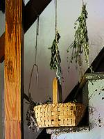 Basket and Drying Herbs