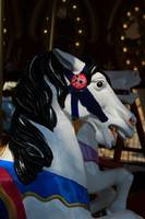 Face of a Carousel Horse