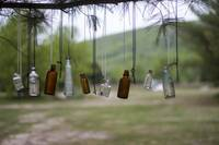 White Pine with Bottles and Keys
