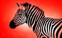 Zebra - Side Eye - Pop Art