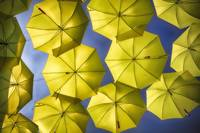 Yellow Umbrellas in the Blue Sky