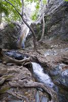 millomeri s waterfall at Cyprus