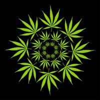 CANNABIS LEAF CIRCLE