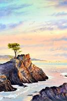 Lone Cypress Tree Pebble Beach