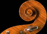 The Luthier's Art