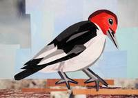 The Woodpecker Carpenter