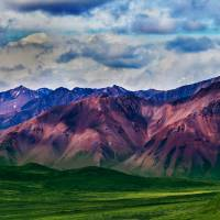 Mt. Denali from Polychrome Pass Art Prints & Posters by Nathan Eigenfeld