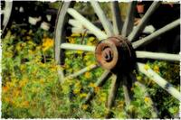 Wagon in Wild Flowers