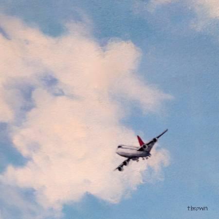 plane - jetliner - pilot bob