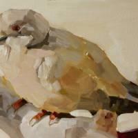 Eurasian Collard Dove Art Prints & Posters by CJ Roughton