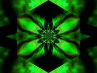 Fire Lotus Green 2