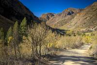 Lundy Canyon Road