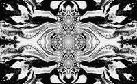 Lotus Mandala in Black and White Pastels 2