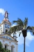 Church Steeple and Palm Tree