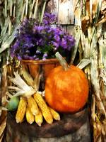 Pumpkin Corn and Asters