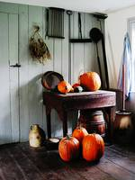 Pumpkins in Kitchen