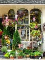 Strasburg Flower Shop