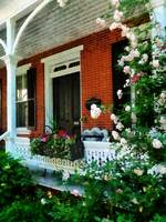 Porch With Climbing Roses