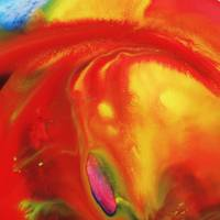 Vibrant Sensation Vivid Abstract I