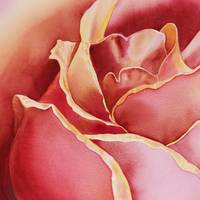 Rose Petals Close Up Painting I