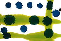 Chartreuse Blue Dots