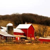 Minnesota Farm by Donnie Shackleford