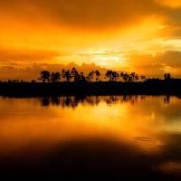 Wetlands Sunrise by Donnie Shackleford