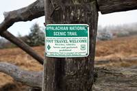 Appalachian Trail at Carver's Gap