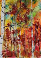 Fall Colors Embellish Oregon Birch