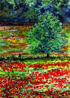French Landscape Poppies of Somme