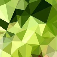 Electric Lime Green Abstract Low Polygon Backgroun