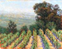 Mountain Vineyard View II