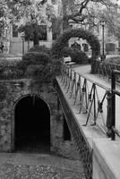 Savannah Archways - Black and White by Carol Groenen