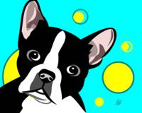 Cute Boston Terrier Art
