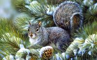 A Winter Squirrel