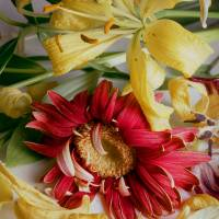 Wilted Daisy andDaylilies Art Prints & Posters by Russ Martin